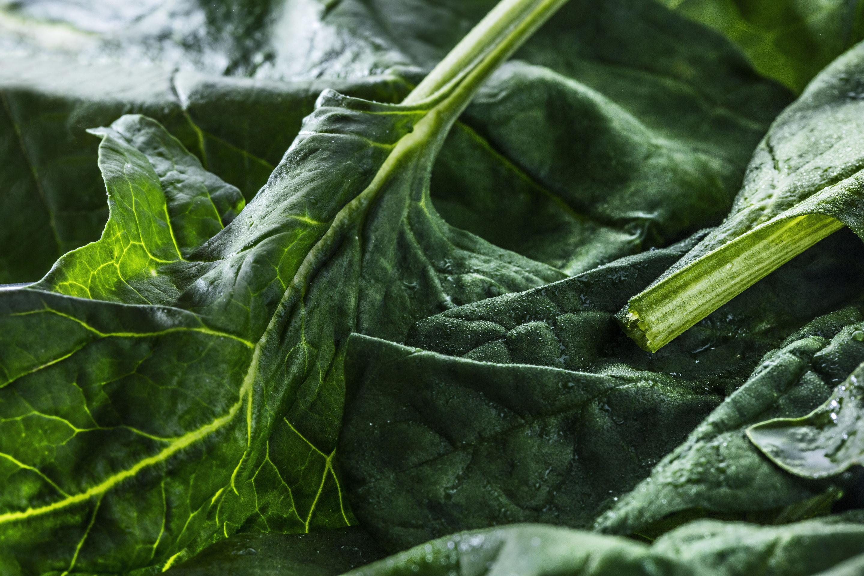 Galettes La Jardinière - Epinards, brocolis et pois doux