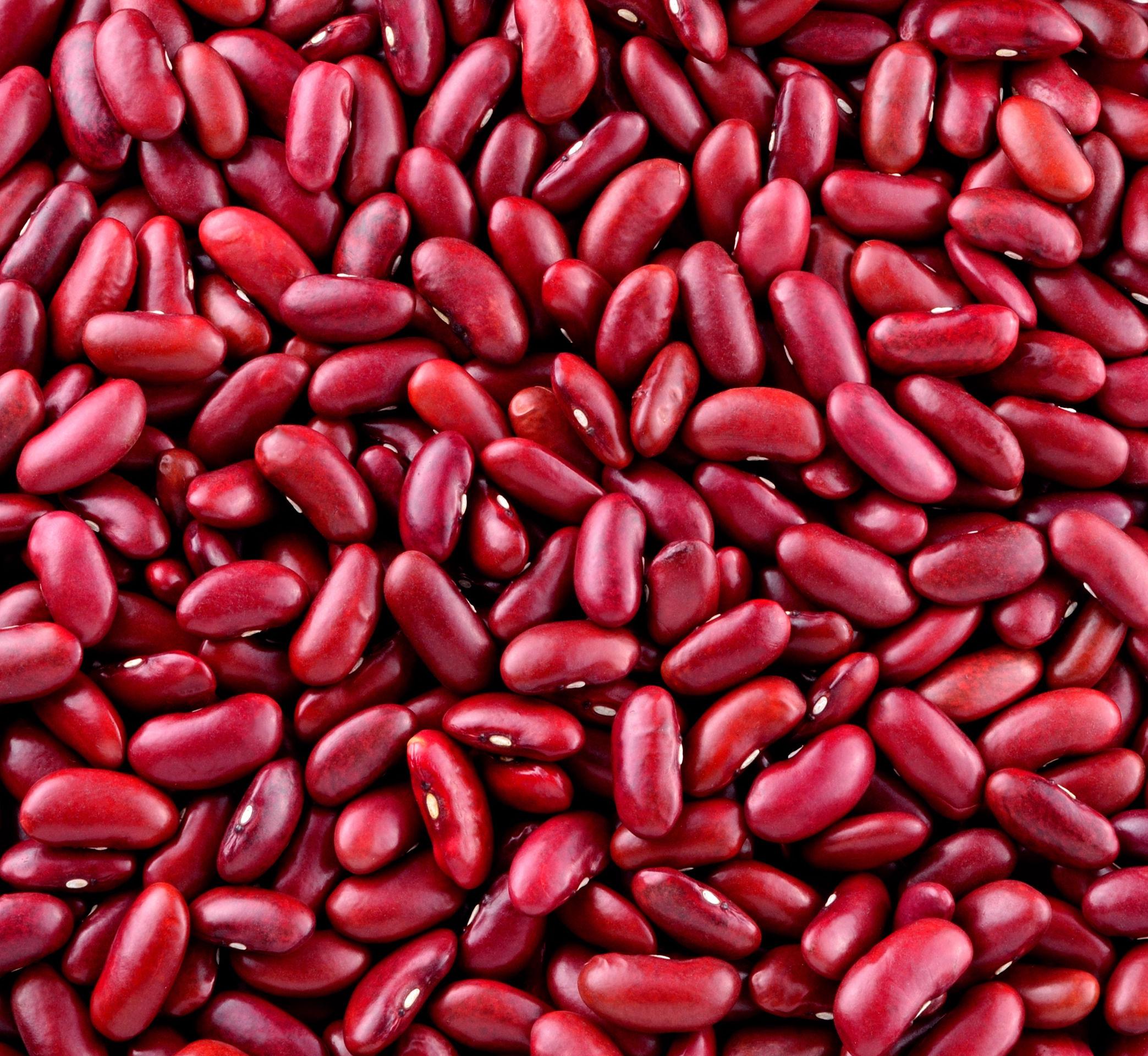 Haricots rouges cuisinés