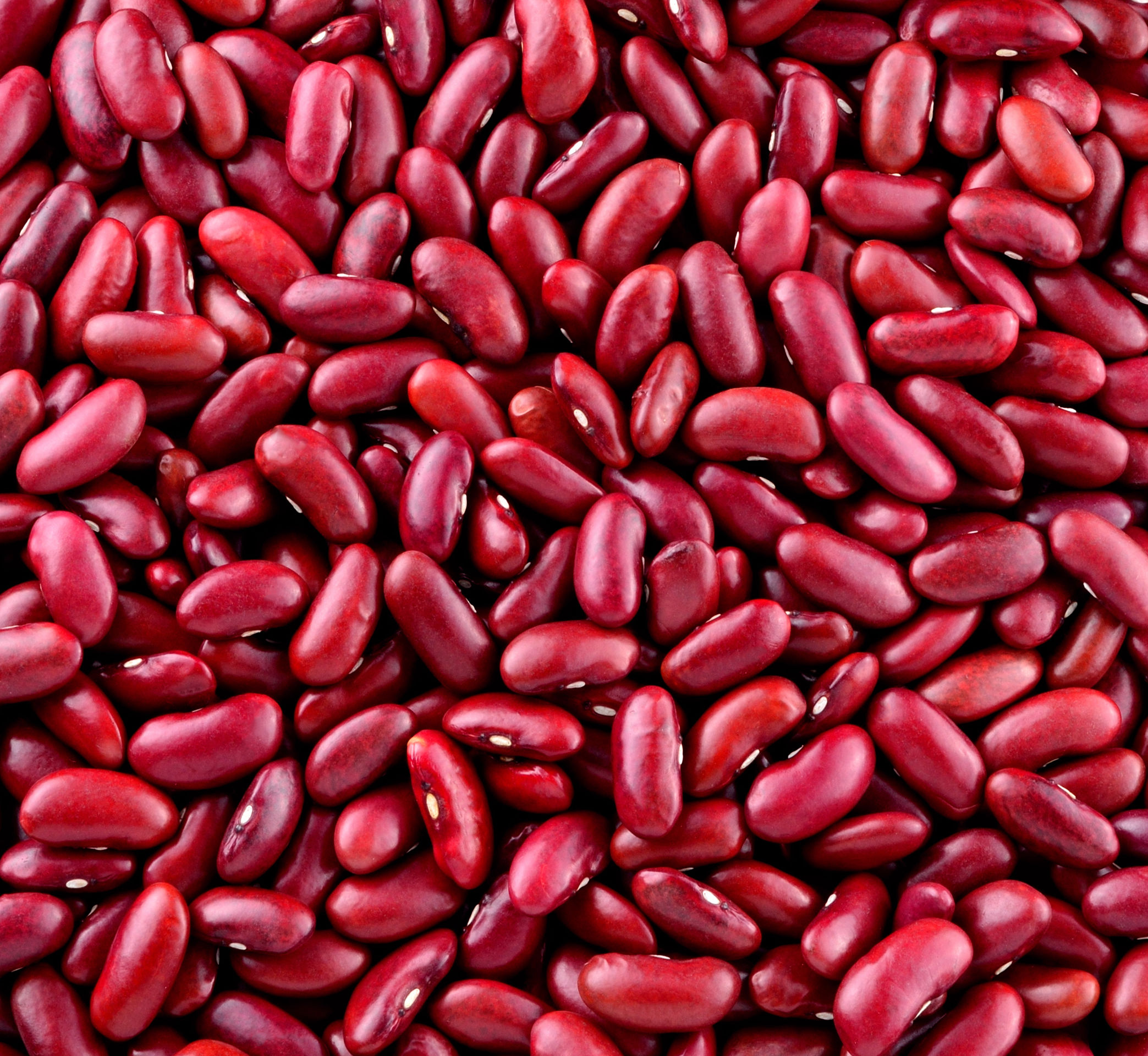 Haricots Rouges cuits dans très peu de jus