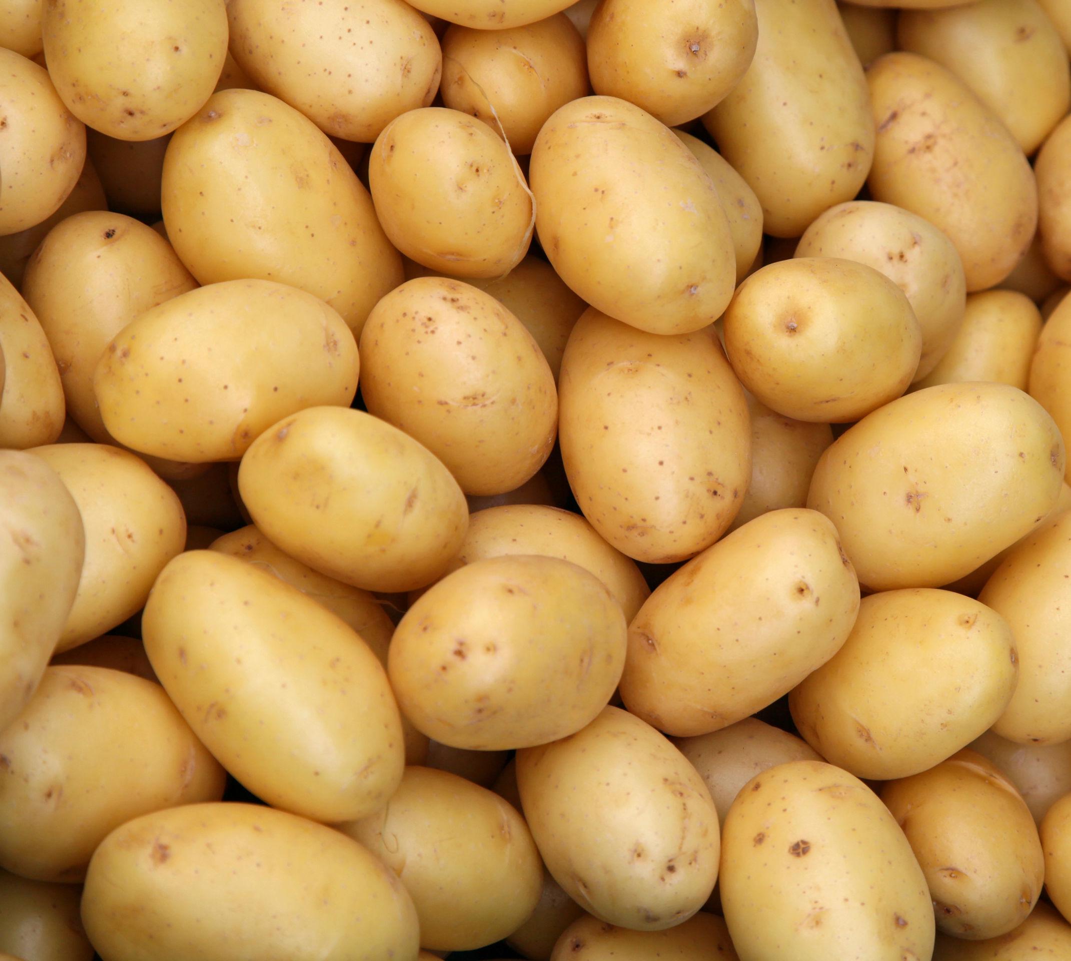 Poêlée La Rustique - Pommes de terre, Bolets, Champignons de Paris