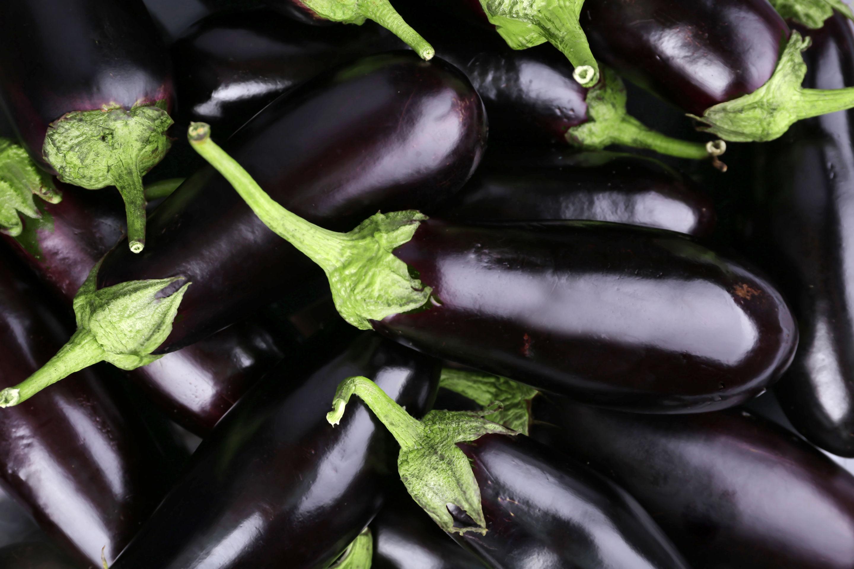 Légumiô en Sauce - Aubergines et Thym
