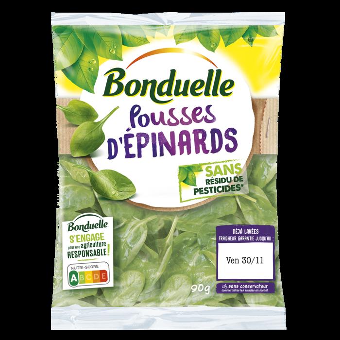 Epinards sans résidu de pesticides 90g
